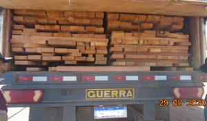 31m3 of illegal lumber seized in Cassilândia