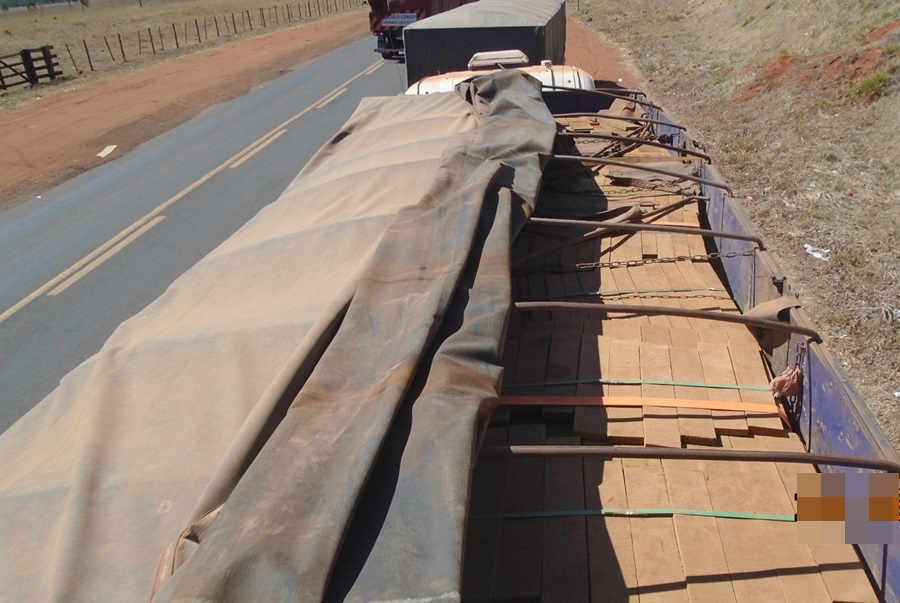 45m3 of illegal lumber seized in Cassilândia