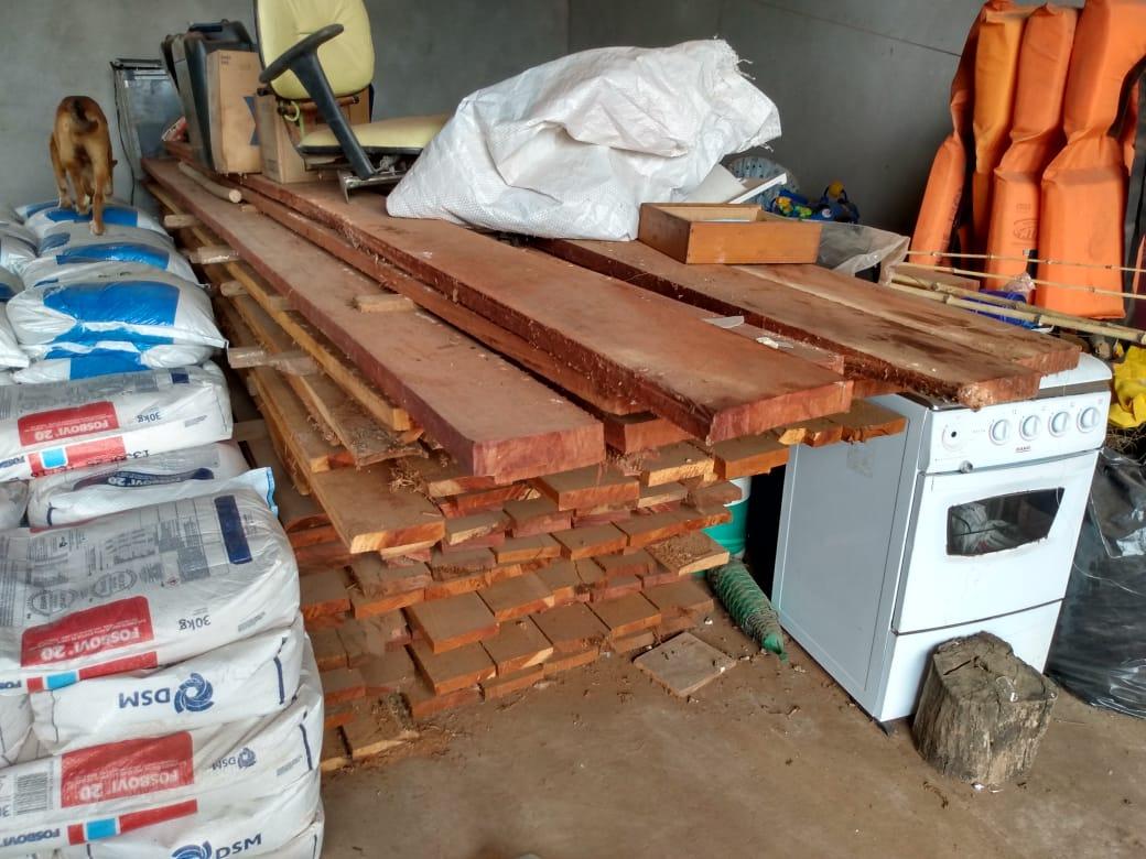 6m3 of illegally stored Ipe lumber seized near Brasilândia